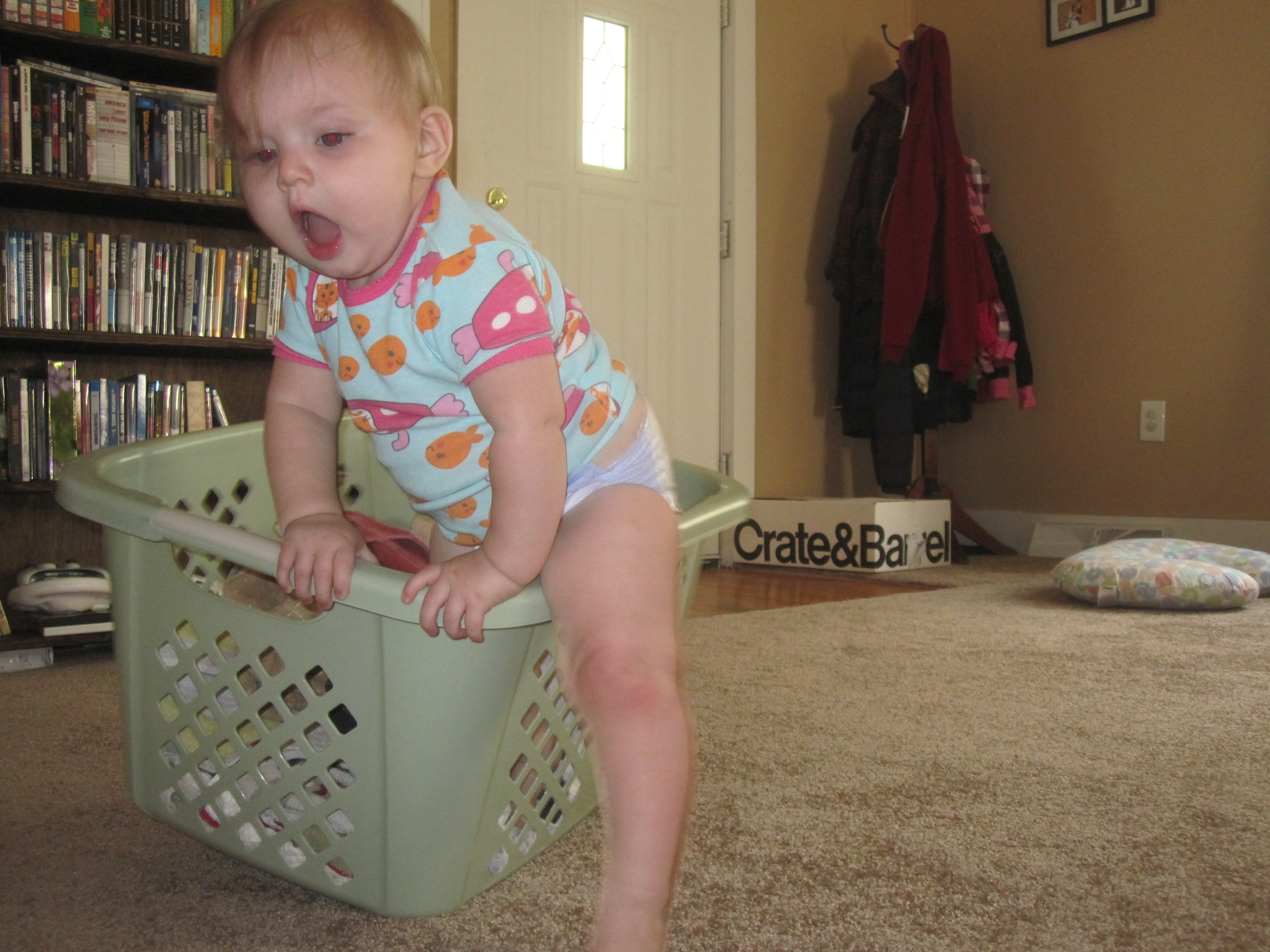 Penelope and the basket.